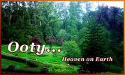 Mysore to Ooty Tours, Mysore to Ooty Side Seeing, Mysore to Ooty Gradens