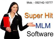 Get Foreign Style MLM Software Panels from 14, 999 only..Karnataka