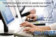 Specialized Web Application Development Company in Davangere