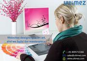 Professional Website Designing Services in Davangere