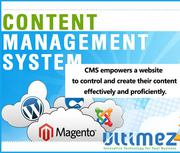 Prominent Content Management System Development Company in Davangere