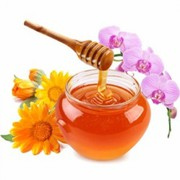 Buy Multi Flower Honey Online – Nativespecial