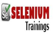 Best Selenium Online Trainer in Bangalore