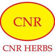 psoriasis treatments chennai,  cnrherbs,  drcnrajadurai,  cnr herbs revie