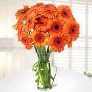 Orange Sunshine Flowers Bangalore