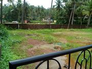 land for sale at nagori  for Rs.44 lack.