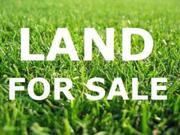 4.60 cent Residential land for sale at kavoor for Rs. 2200000.