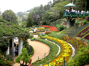 Mysore – Coorg – Ooty – Kodaikanal 5 Nights / 6 days Tour Package from