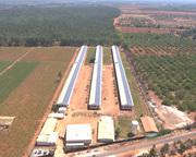 Solar Power Energy Companies in India  Call: +919482276743,