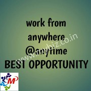 Get Paid by using the Internet and your skills,  Simple work from home