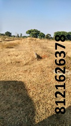 The  plot at Nagaram, Hyderabad (Ranga Reddy) district Just 13 km from
