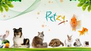 Buy Pet Food India - Pet supplies