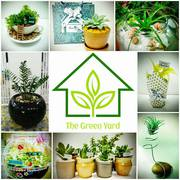Best Plant Nursery in Bangalore - Garden Accessories for Sale