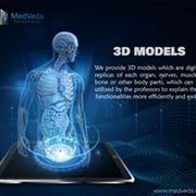 3d Anatomy Videos for Medical Colleges & Professionals at MedVeda