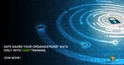 CISSP Live Virtual Training at Mercury Solution