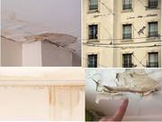 External Wall Water Seepage Repair
