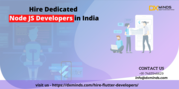 Hire Flutter Programmers for onsite and offsite requirements   DxMinds