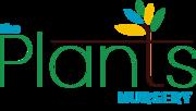 The plants nursery - online plants Bangalore